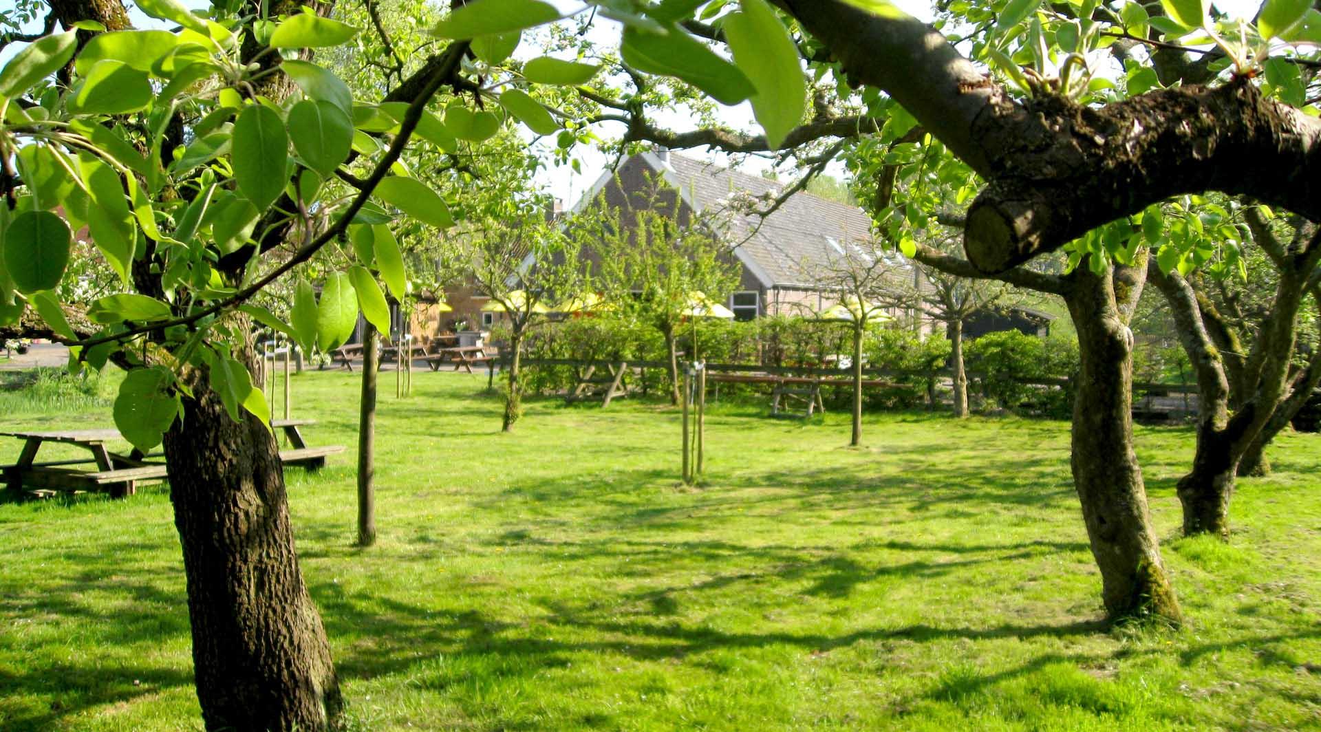 Buiten trouwen in de boomgaard bij Buitenplaats Vlaardingen